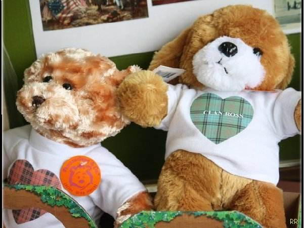 SPECIAL BEARS